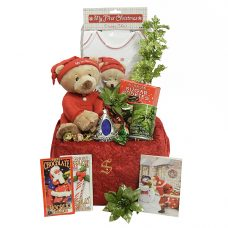 Baby's 1st Christmas Musical Bear - Santa's Gift Package