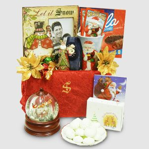 Santa Snow Globe Package