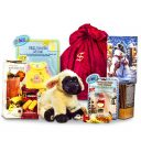 Poodle Noodle Webkinz Package