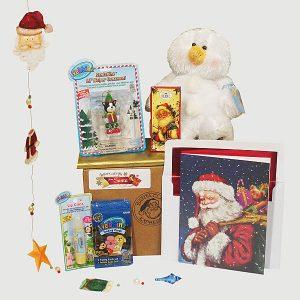 Sparkling Holiday Snowman Webkinz - Santa Gift Package