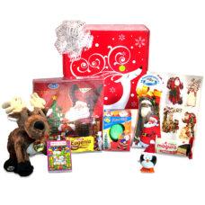 Santa's Magical Reindeer